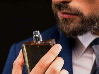 543194575 fragrâncias sofisticadas – Página  7 – Homem no Espelho