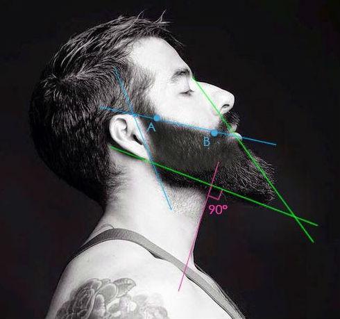 Homem No Espelho - Estilos de barbas.