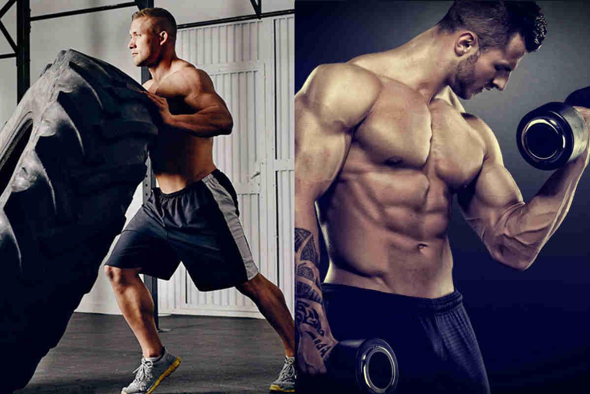 Crossfit Ou Musculacao Qual O Melhor Treino Para Fazer